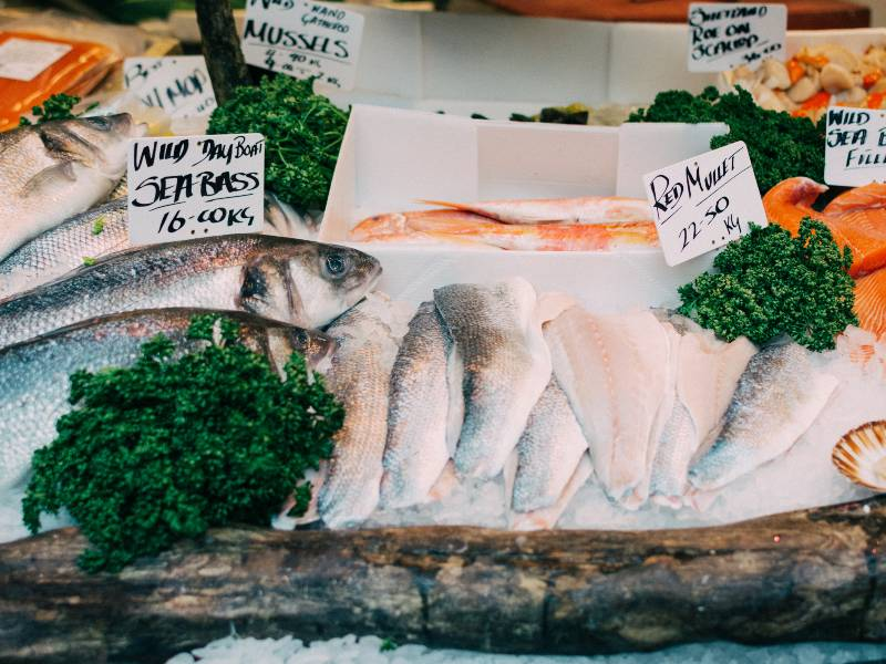 Sea Bass Sales